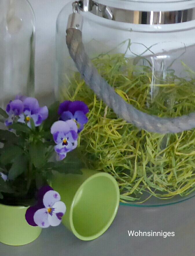 wohnsinniges flower friday. Black Bedroom Furniture Sets. Home Design Ideas