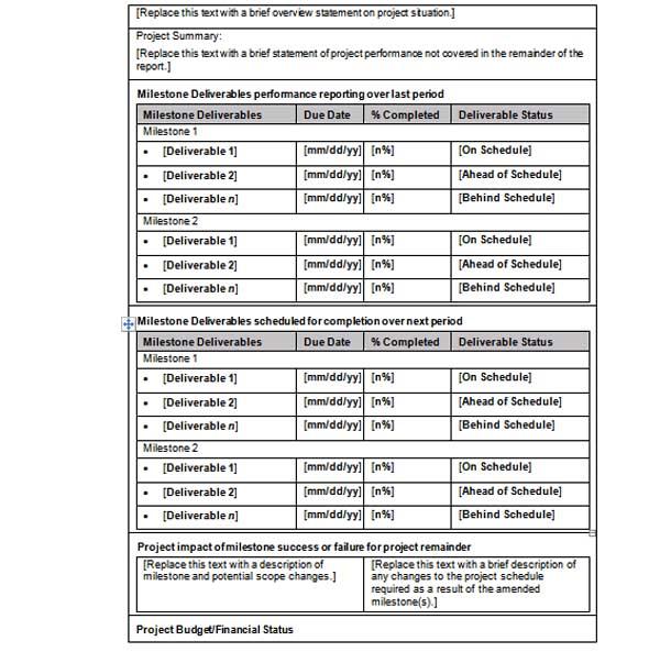 status report template word xv-gimnazija