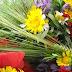 REDE SOCIAL - Penacova comemora o Dia da Espiga