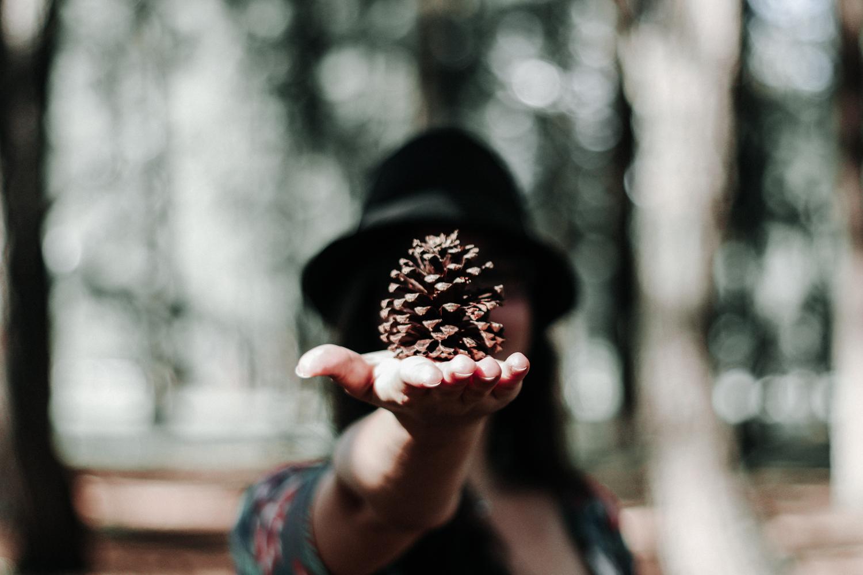 tchau, brasília / coffee & flowers blog