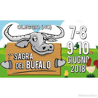 Sagra del Bufalo dal 7 al 10 giugno Oleggio (NO)