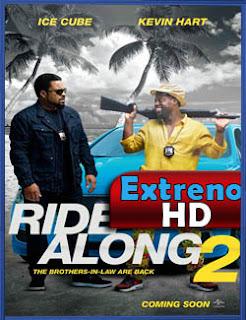 Dos locos en patrulla (2016) | DVDRip Latino HD Mega