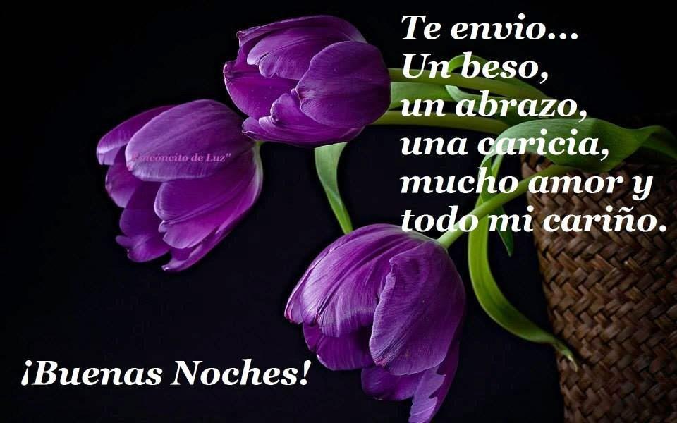 Buenas Noches violetas