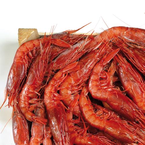 Sicilia in cucina le ricette tagliolini con gambero for Ricette gambero rosso