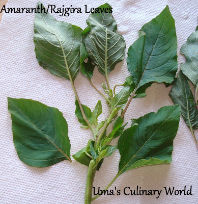 Amaranth Leaves or Rajgira Bhaji