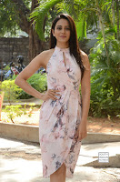 rakul preet singh khakee success meet 1.jpg