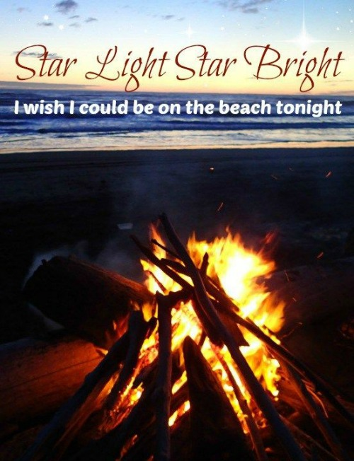 Beach Bonfire Picture