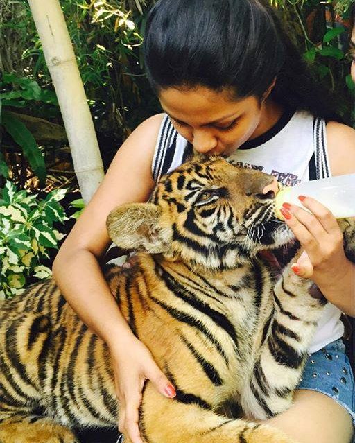 Shalani Tharaka feeding baby tigers in Thailand