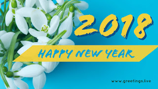 small beautiful white flowers 2018 greeting yellow color fonts