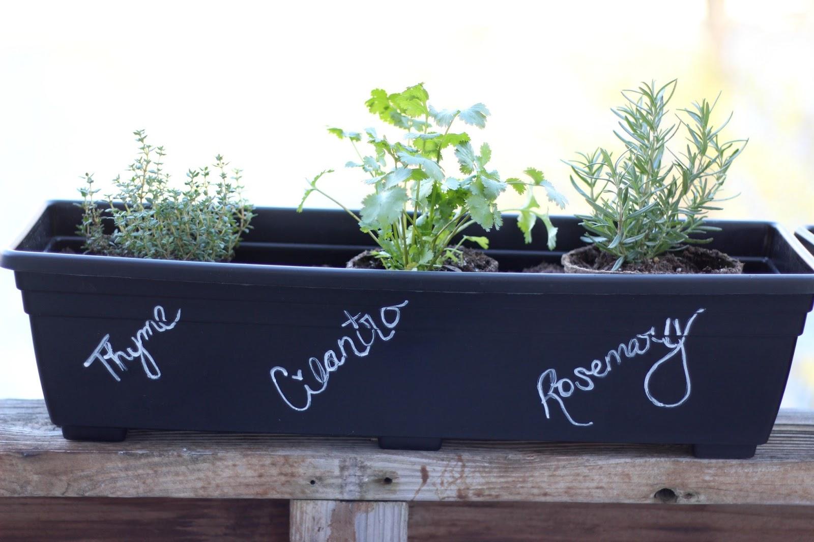 Rose & Co Blog: Our DIY Herb Garden Rectangular Herb Garden Design I Html on