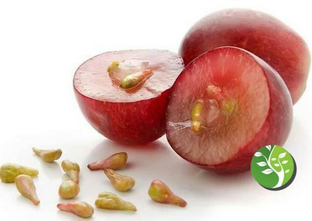 8 مركبات غذائية نباتية رخيصة  تقضي علي السرطان دون أي أثار جانبية