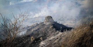 Γιάννης Σγουρός : Στον ύπνο πιάστηκαν Κυβέρνηση και Περιφέρεια Αττικής με τη φωτιά στην Ανατ. Αττική