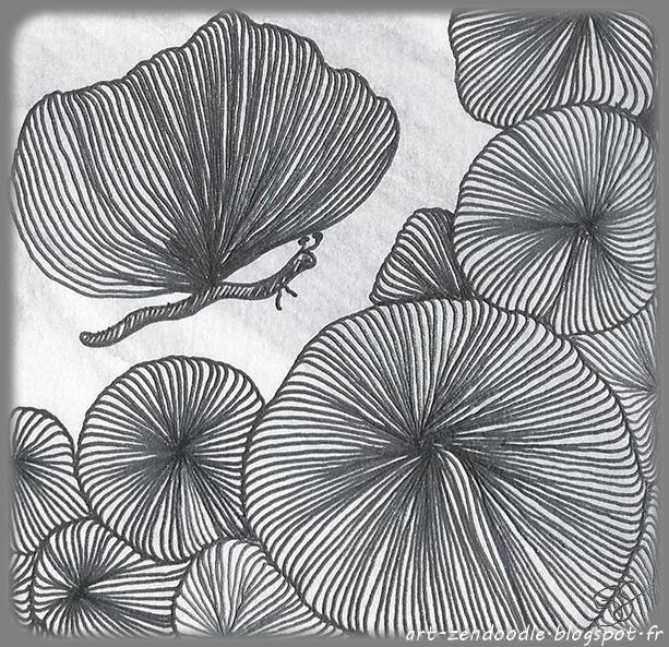 zendoodle circonvolution zendoodle papillon