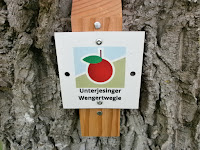 Premium-Spazierwanderweg Unterjesinger Wengertwegle bei Tübingen-Unterjesingen, Teil 1 von 5