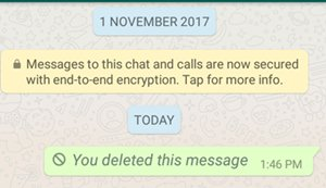 Whatsapp send message delete