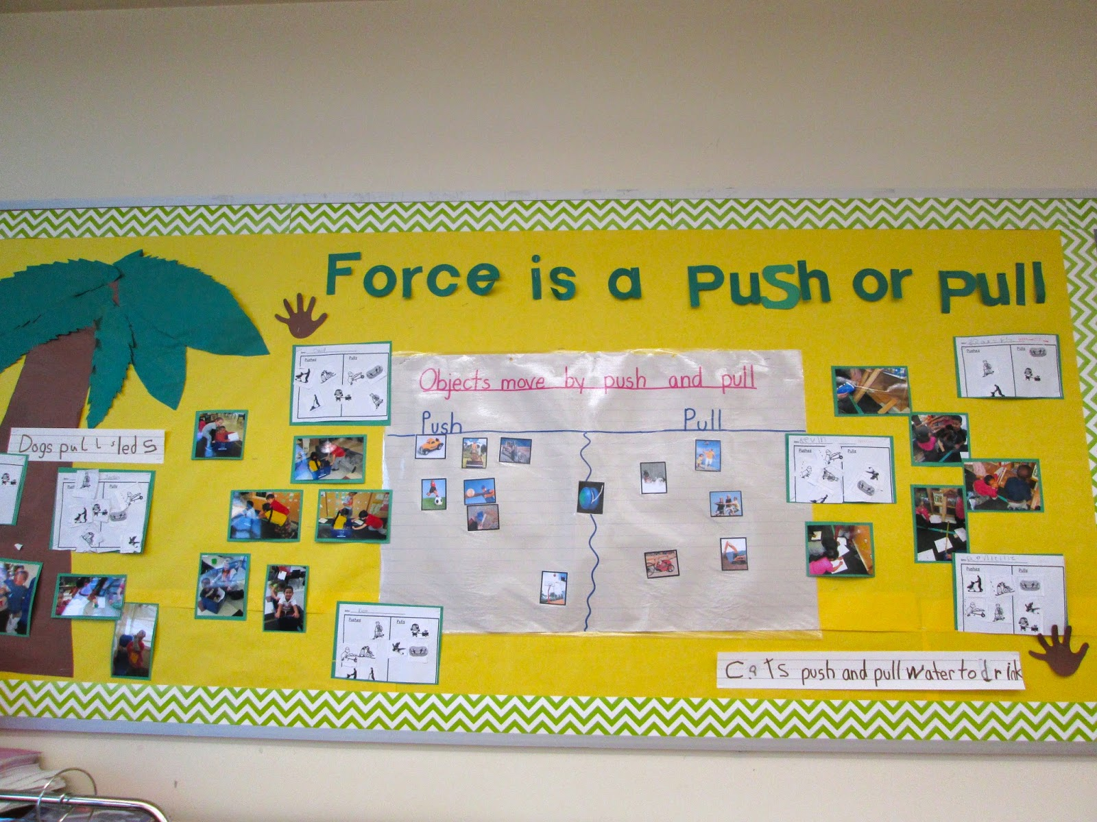 Pull And Push Worksheet