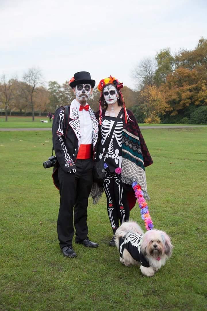 Fun Dog Shows West Midlands