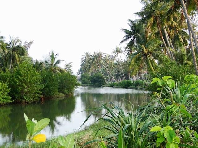 Mơ ước về  một dòng kênh xanh trong lòng thành phố