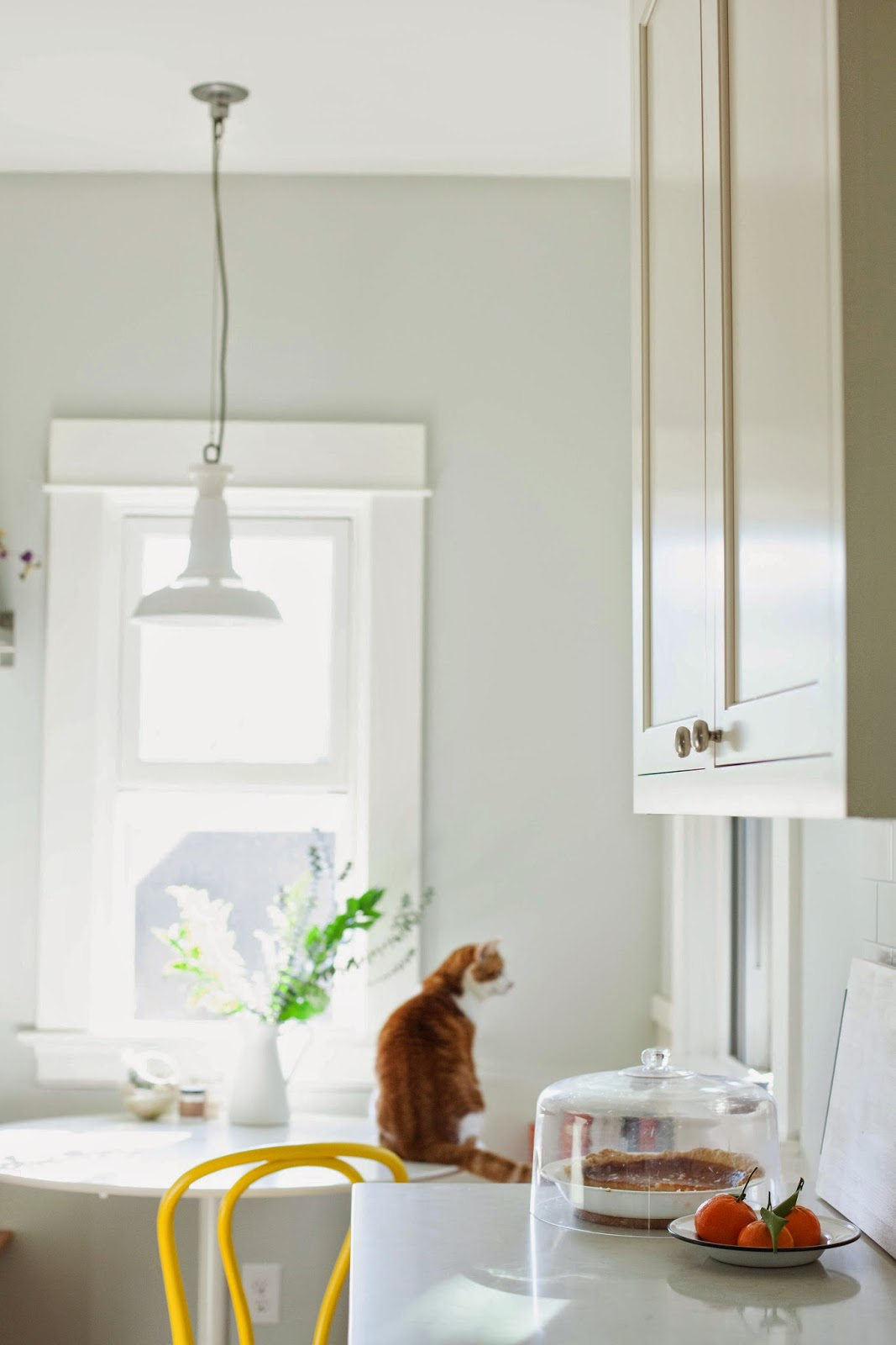Hummingbird High\'s Kitchen Remodel, Pt. III: After   hummingbird ...