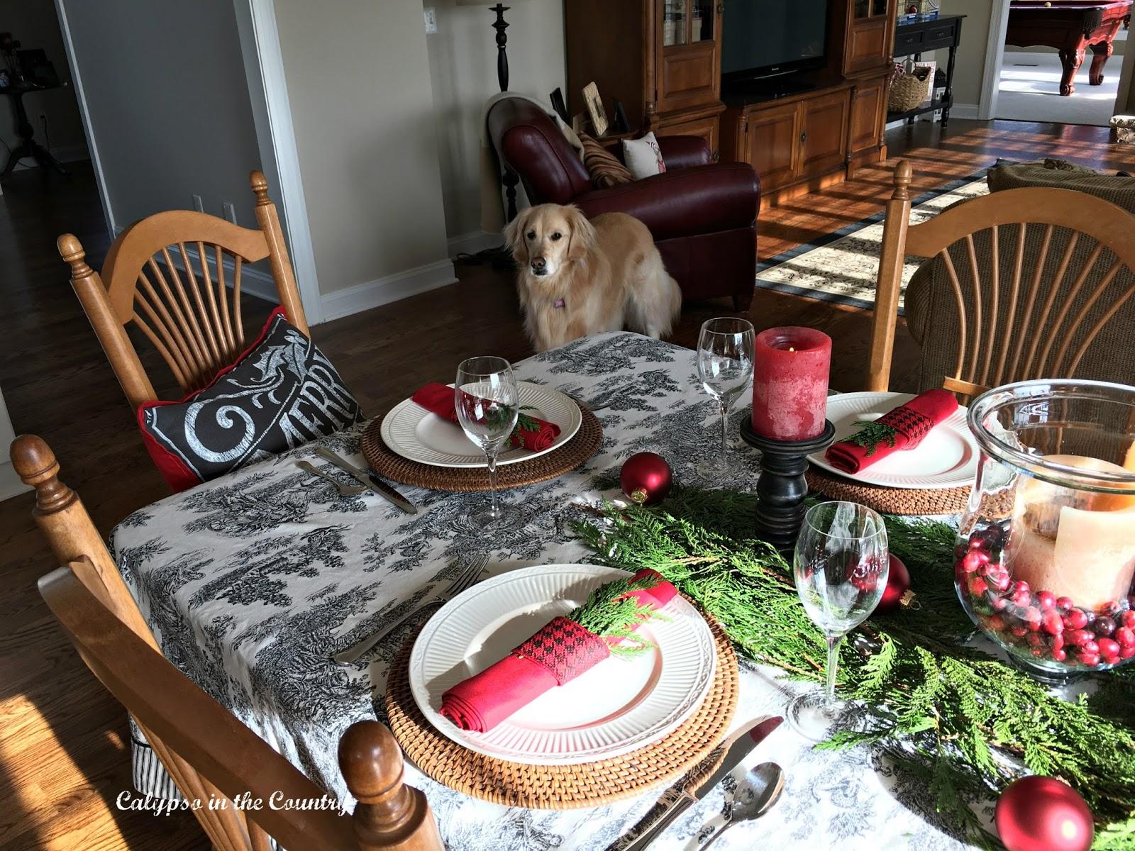 Christmas Table and Golden Retriever