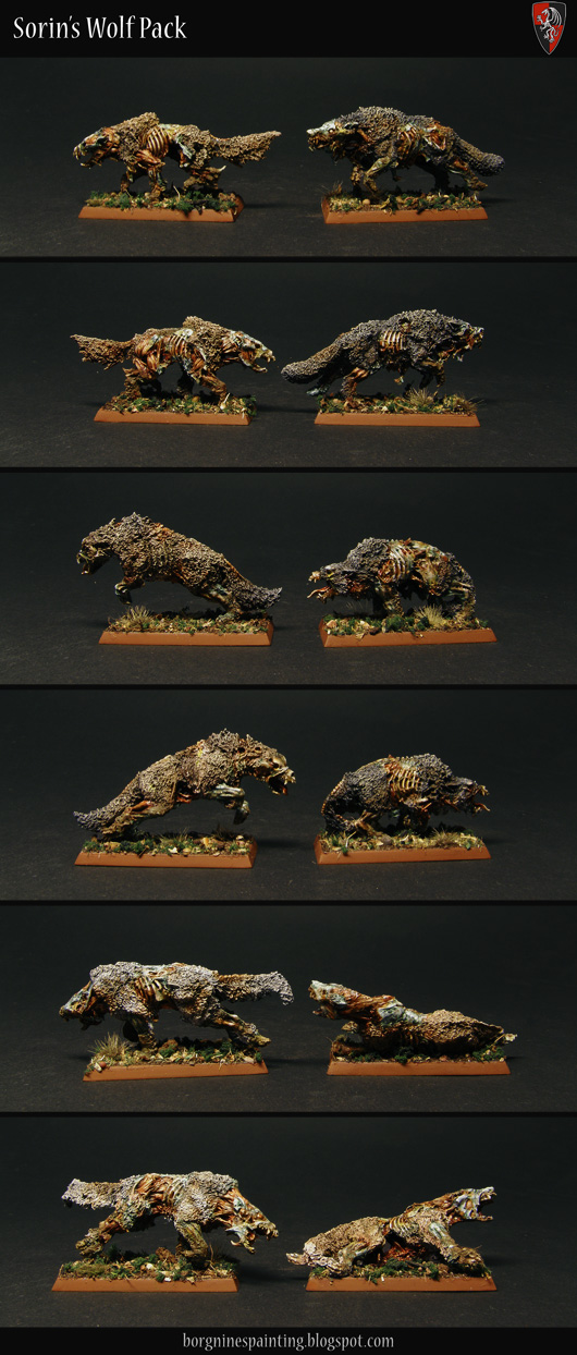 6 Zombie Wolves miniatures from Gamezone, shown separately from both sides, to be used as Dire Wolves in WFB or AoS. They all have a slightly different fur color to differentiate them.