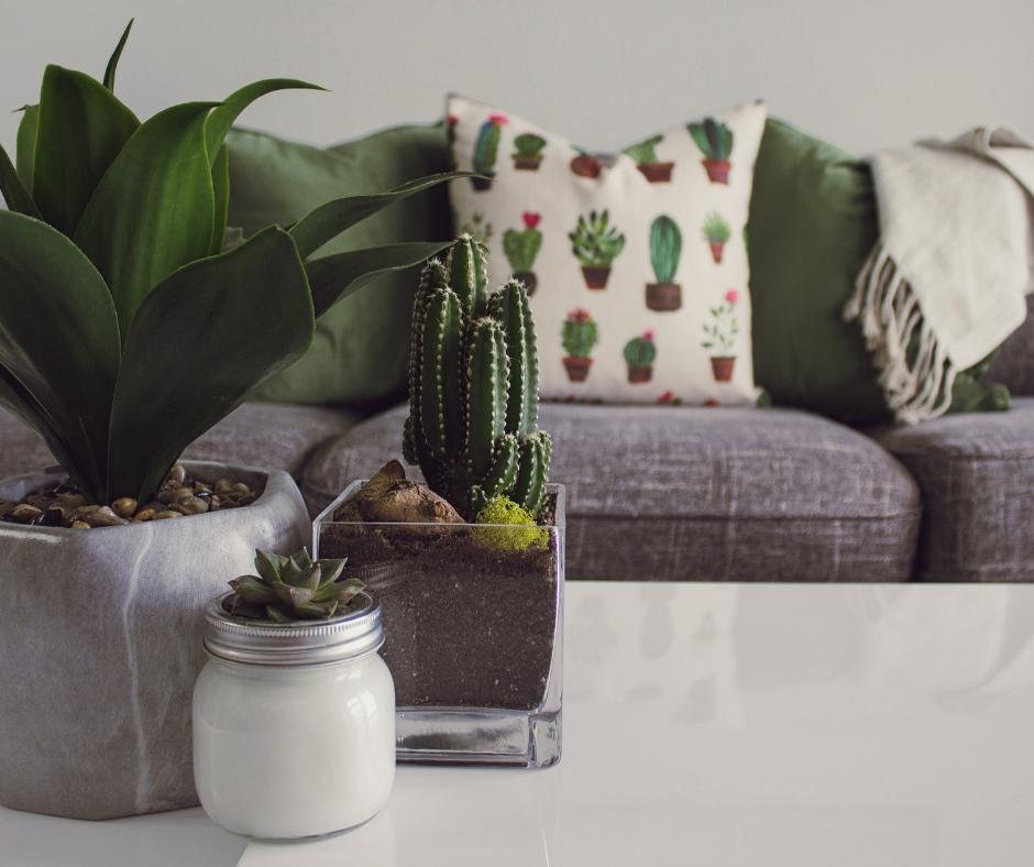 5 Home decor Instagram λογαριασμοί που αξίζει να ακολουθήσεις - Edityourlife Magazine