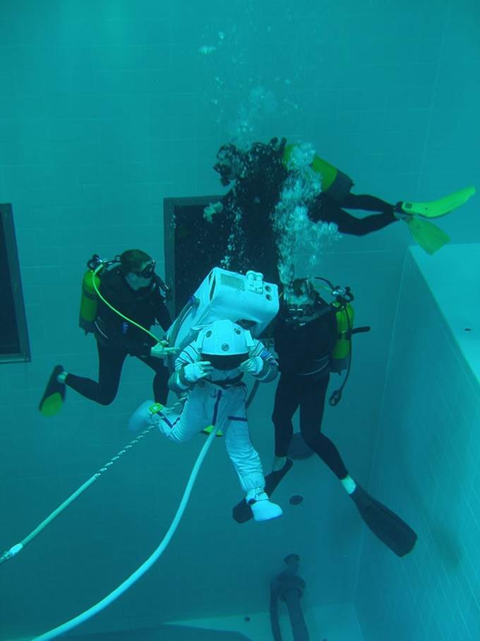 divers in nemo 33