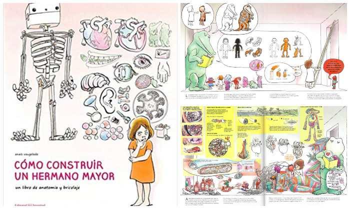Libro informativo de conocimientos Cómo construir un hermano mayor, anatomía