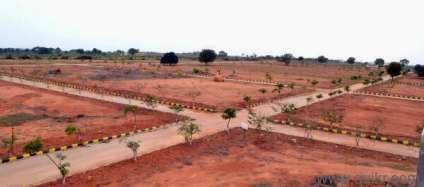 Open Plots in Adibatla