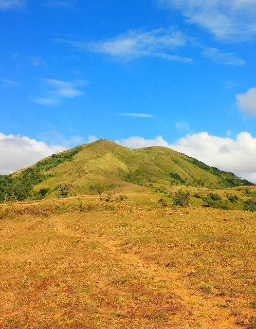 Dare to conquer Mt. Talamitam - Apayang