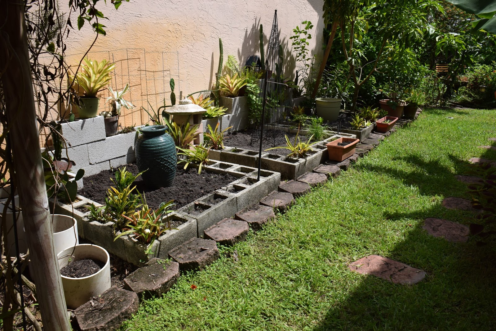 Dragonfly garden time to make the winter vegetable garden - Prepare vegetable garden for winter ...