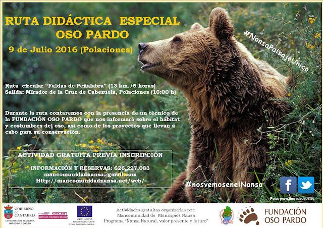Ruta gratuita para conocer el habitat del Oso Pardo en Polaciones