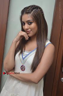 Telugu Actress Anu Emmanuel New Stills in Beautiful White Long Dress  0024.JPG
