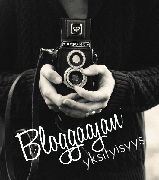Bloggaaja ja yksityisyys