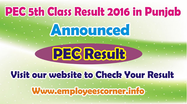 PEC 5th Class Result 2016 in Punjab for All Districts