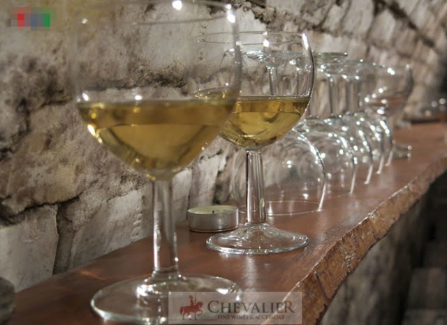 Thăm hầm rượu trăm năm tuổi của nữ doanh nhân Hungary gốc Việt