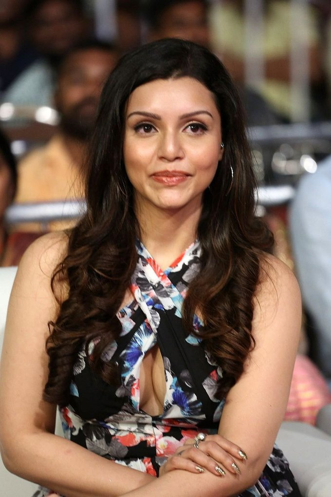 Kyra Dutt at Shamanthakamani Movie Pre Release Function Gallery