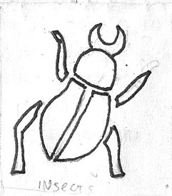 Beetles Raw Drawing