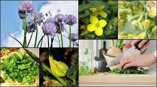 Five Edible Recipe Flowers