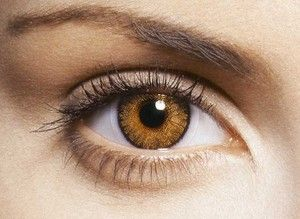 guide maquillage quelles couleurs pour les yeux marron filles des tropiques. Black Bedroom Furniture Sets. Home Design Ideas