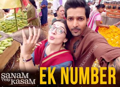 Ek Number - Sanam Teri Kasam (2016)