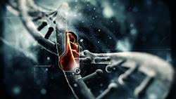 DNA History