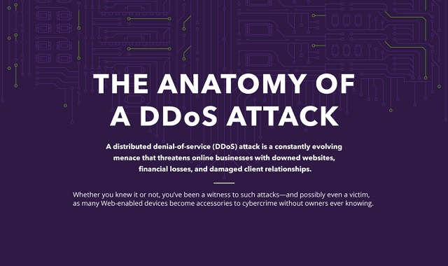The Anatomy of a DDoS Attack