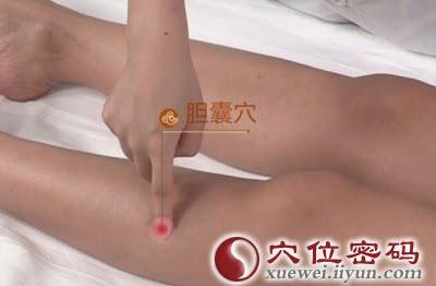 膽囊穴位 | 膽囊穴痛位置 - 穴道按摩經絡圖解 | Source:xueweitu.iiyun.com
