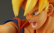 Goku SCE