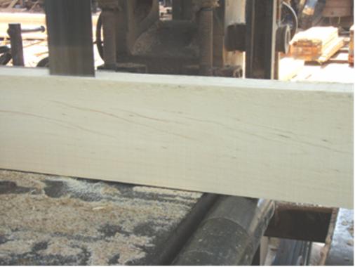 chế biến gỗ cây thiên ngân