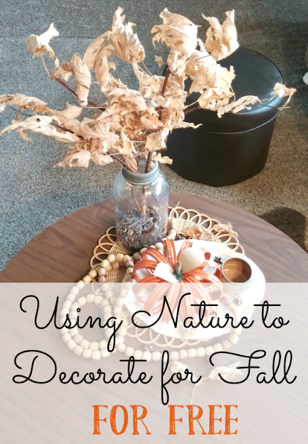 Using Nature to Decorate for Fall... for Free!