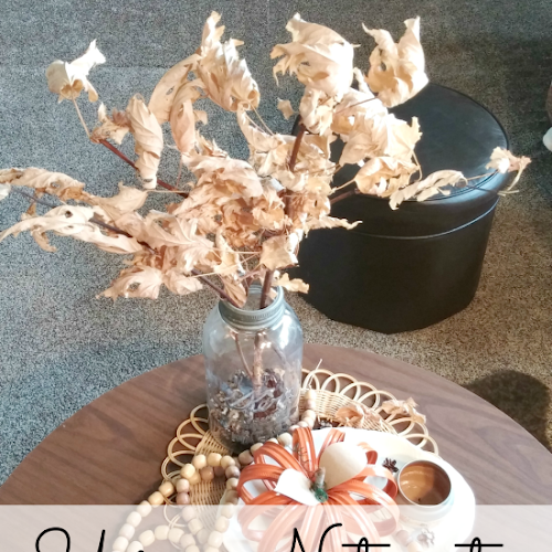 Using Nature to Decorate Your Home