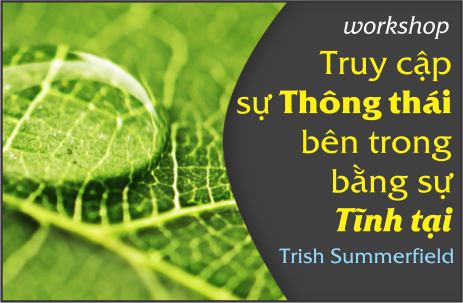 WORKSHOP-DAC-BIET-VOI-TRISH-SUMMERFIELD-CHO-QUA-DI-TRUY-CAP-SU-THONG-THAI-BANG-SU-TINH-TAI