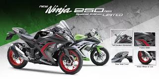 Kawasaki Ninja 250 Special Edition ABS